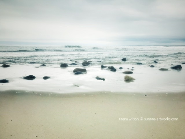 Gifts from the Sea 1, Photography by Raena Wilson
